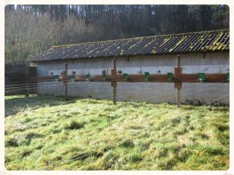 le tir au 10m se pratique en extérieur jusqu'au grand froid.